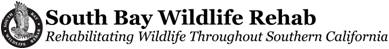South Bay Wildlife Rehab